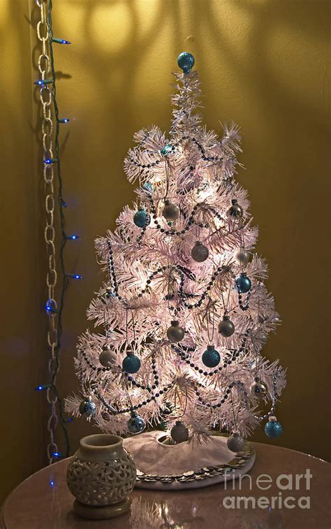 small silver and blue table top christmas tree photograph