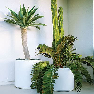White Plant Containers Potted Plants Simple Garden Ideas Sunset