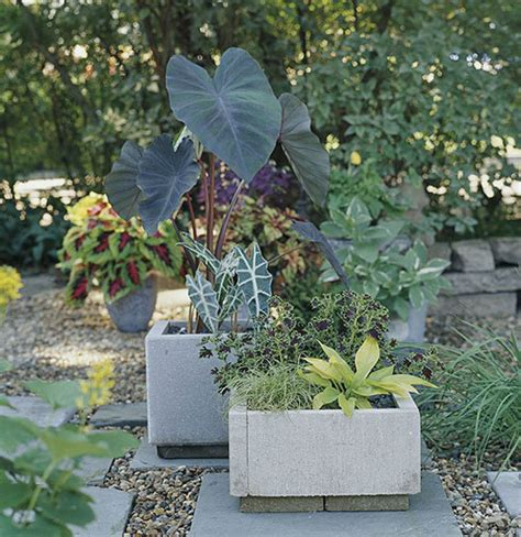 diy modern concrete planter 187 curbly diy design decor