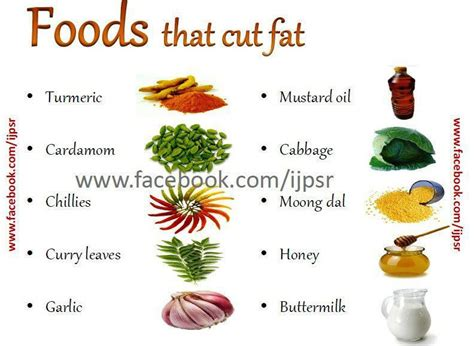 2 vegetables that make you foods that will make you lose weight best diet solutions