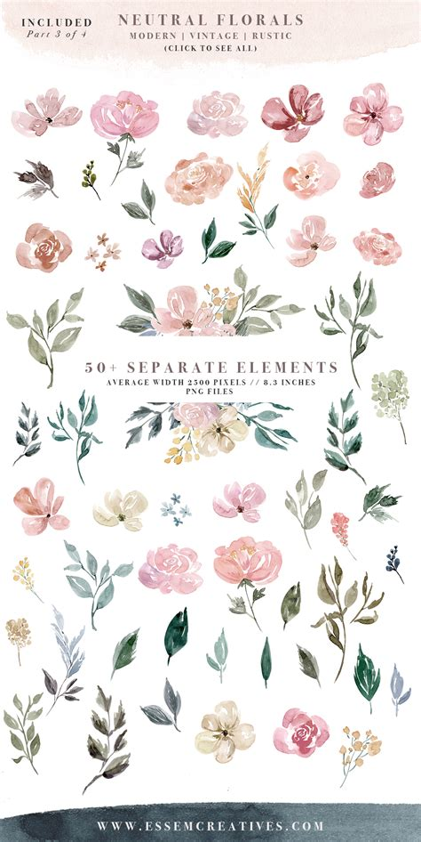 Cool Frame Designs by Neutral Watercolor Flowers Clipart Floral Borders