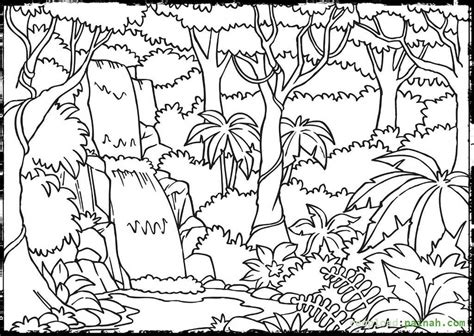 rainforest coloring pages forest coloring pages