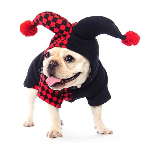 clown costume for dogs dogloveit clown costumes soft clothes for cat puppy pet x small
