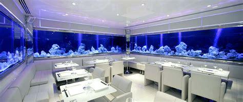 aquarium design store the aquatic design centre adc aquarium design bespoke