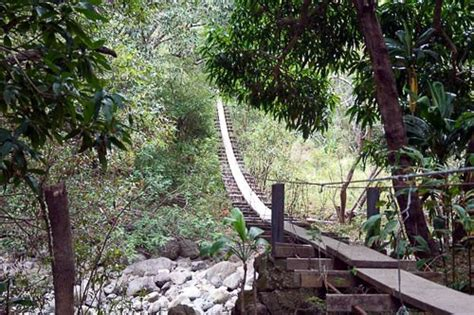 swinging bridges hike maui best hawaiian hikes 6 fit for the family