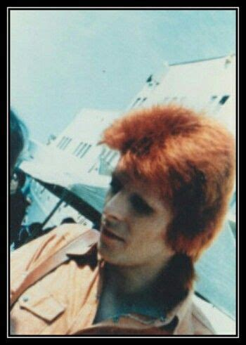 david bowie a life 1848094957 17 best images about david bowie on david bowie ziggy the thin white duke and