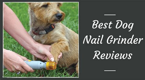 best nail grinder best nail grinder reviews february 2018 safe and trimming