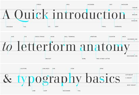 typography finial playtype typographer s glossary
