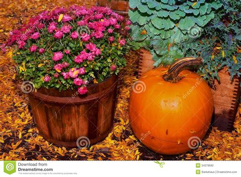 harvest colors harvest colors stock photography image 34379692