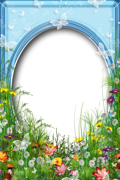 cute png summer photo frame  flowers gallery