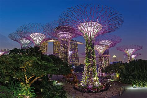 Botanic Gardens Lights Singapore S Powerhouses Neglect Local Intellectual Life