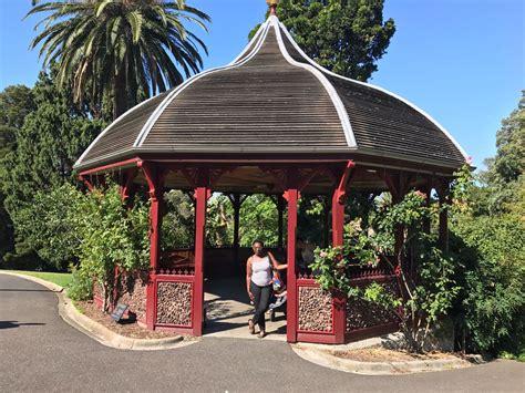 high tea melbourne botanical gardens high tea botanical gardens melbourne high tea at the