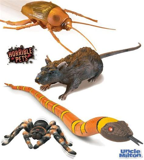 comprar imagenes para web baratas horrible pets barata rato tar 226 ntula e cobra com