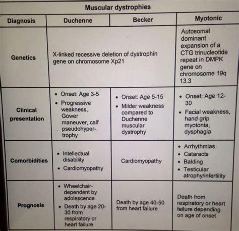 myotonic dystrophy pattern of weakness muscular dystrophies myotonic dystrophy is autosomal