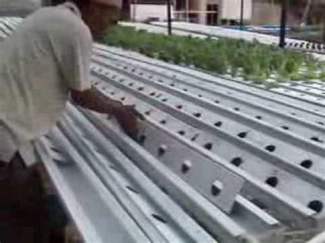 Pipa Kotak Hidroponik cara membersihkan gully nft