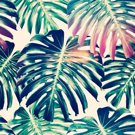 jungle wallpaper pattern beautiful seamless floral pattern backgrounds with