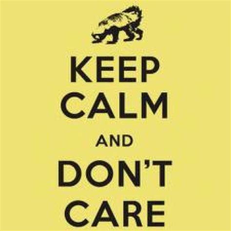 honey badger images  pinterest ha ha honey badger  funny stuff