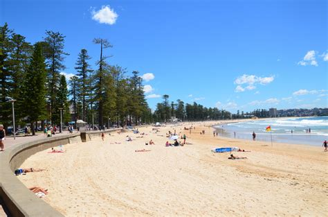 manly appartments manly beach holiday and executive apartments manly northern beaches australia