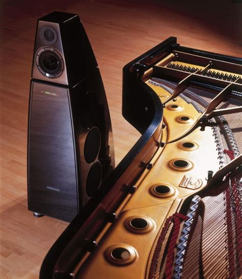 merdian dsp  speakers home entertainment home