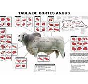 Despiece De La Carne Vacuno – Valencia Gastron&243mica