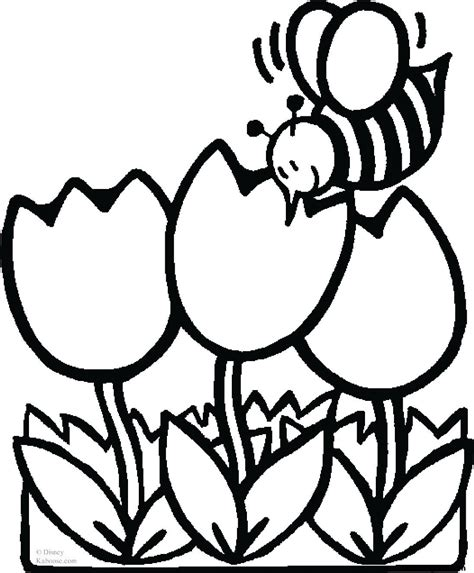 Print Out Pictures Coloring Pages Bee With Tulips Coloring Pages To Print Out