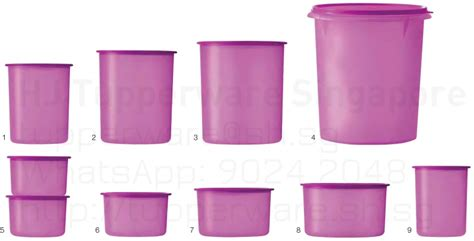 Canister Large 1 3l buy tupperware singapore buy your tupperware