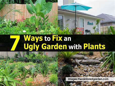 Fix Garden by 7 Ways To Fix An Garden With Plants