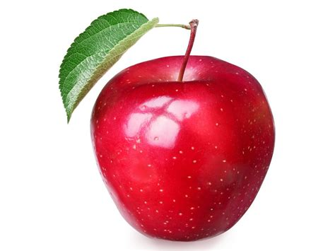 best free apple apple fruits high defination wallpapers free