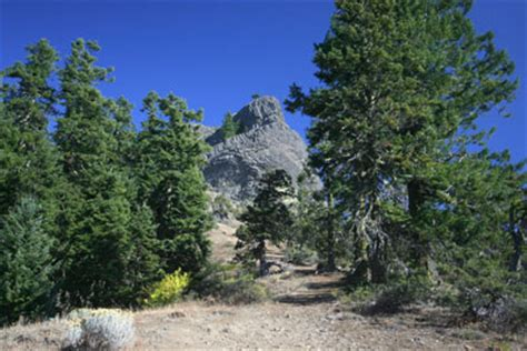 the siskiyou peaks trail from ashland or to mt shasta ca thru the klamath knot books zach s adventures peaks of the siskiyou mountains