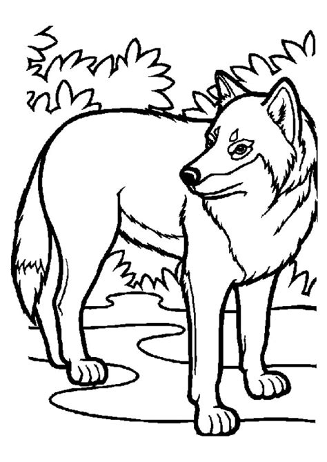 coloriage mini loup à imprimer
