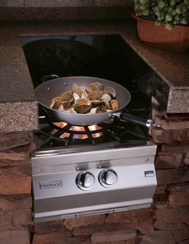 Fire Magic Premium Grills and Outdoor Cooking Centers