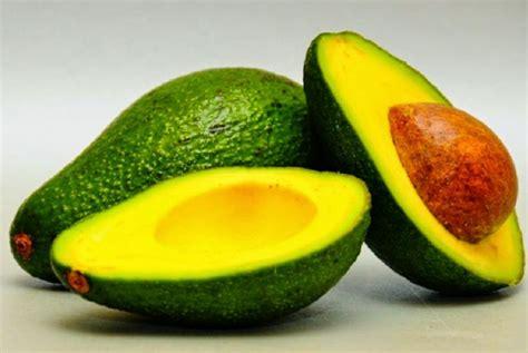 baru ditemukan 14 manfaat buah alpukat kecantikan dan kesehatan