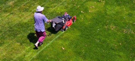 Landscape Rake Spokane Spokane Pro Care Lawn Specialists Treat And Prevent Rust