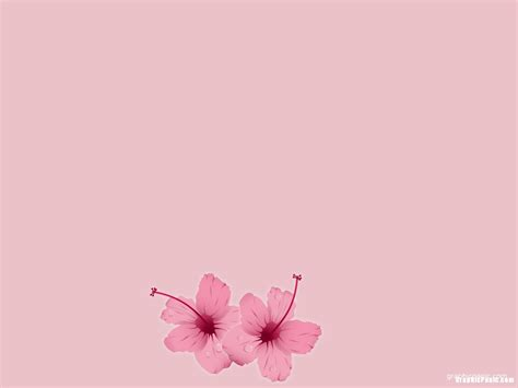 Girly Pink Background Graphicpanic Com Girly Powerpoint Templates