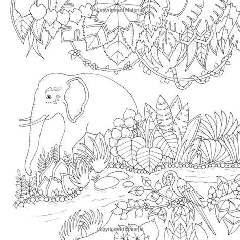 magical jungle an inky amazon com magical jungle an inky expedition and coloring book for adults 9780143109006