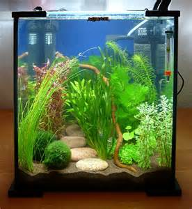 aquarium design ideas freshwater woodworking projects