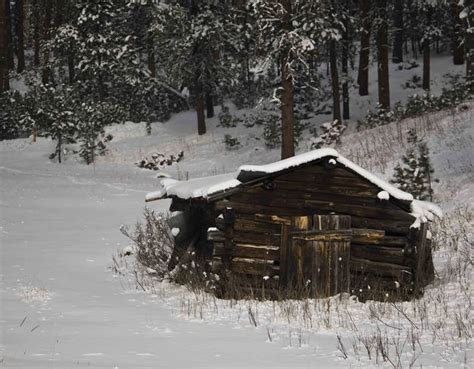 Homesteaders Cabin by Homesteaders Cabin Dave Bell Pinedale