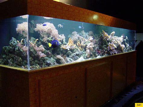 Acrylic Aquarium Acrylic Aquariums