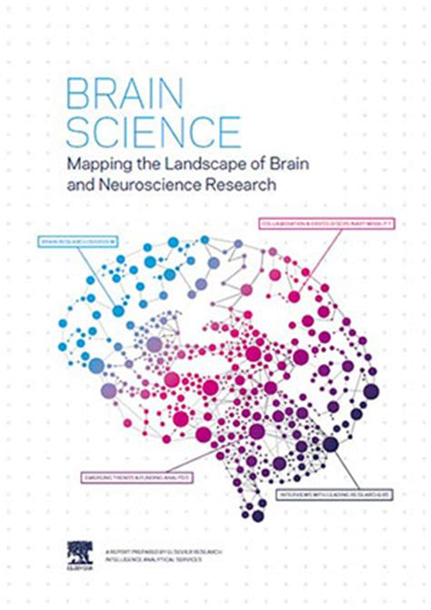 your brain on and the emerging science of addiction books new report maps the landscape of global brain research