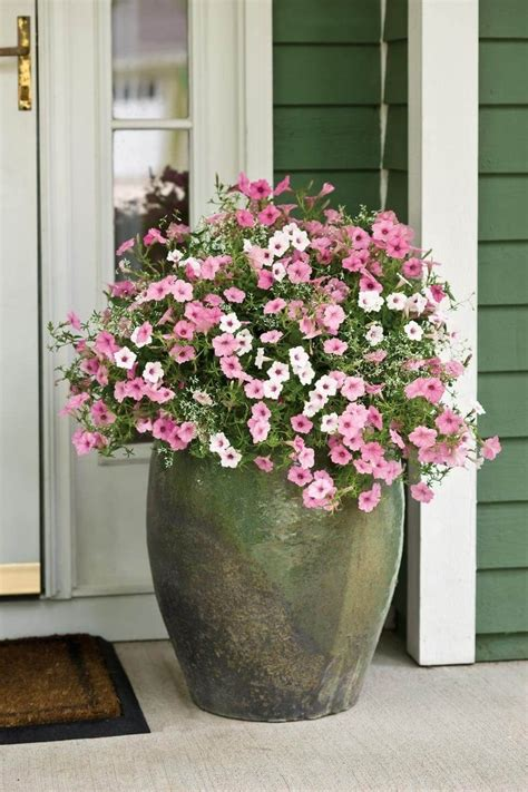 flower planter ideas flower idea flower planter ideas for