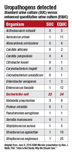 urine culture report sle missed utis enhanced cultures suggest so cap todaycap