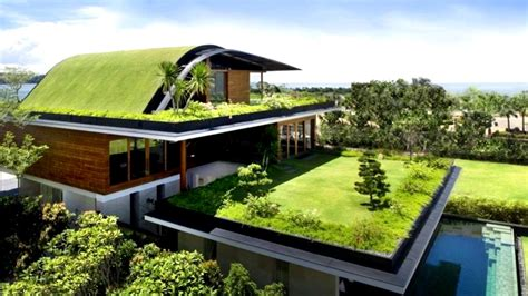 living roofs 12 homes with living roofs