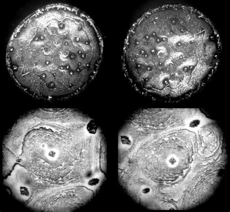 pattern formation in drying drops complex pattern formation in sessile droplets of protein