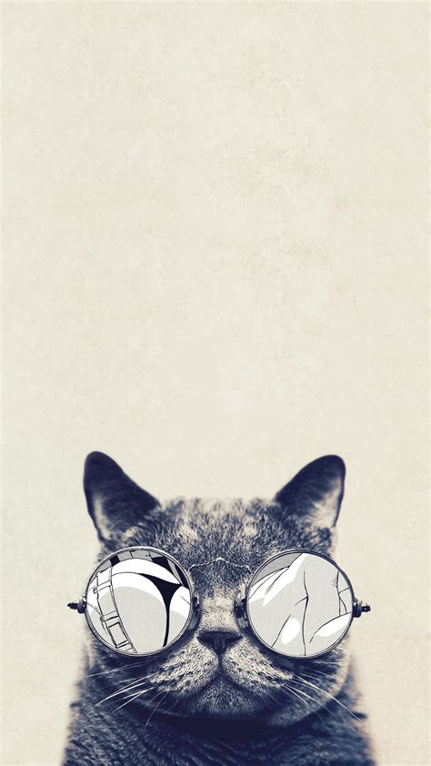 iphone wallpaper cat glasses 60 amazing animal iphone wallpaper free to download