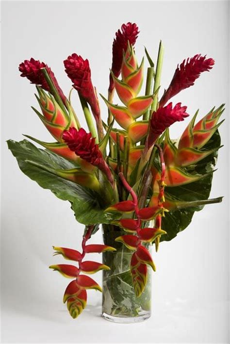 flower arrangements pictures exotic flower arrangements bing images inspiration for