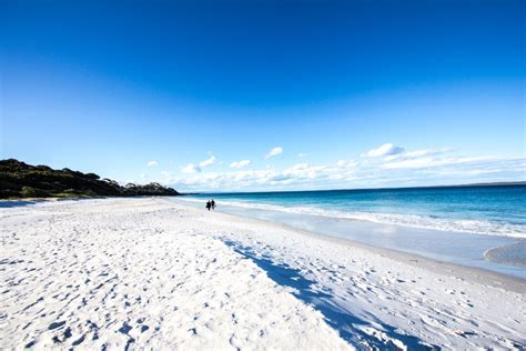 libro arena blanca la playa de arena m 225 s blanca del mundo noticias de el tiempo