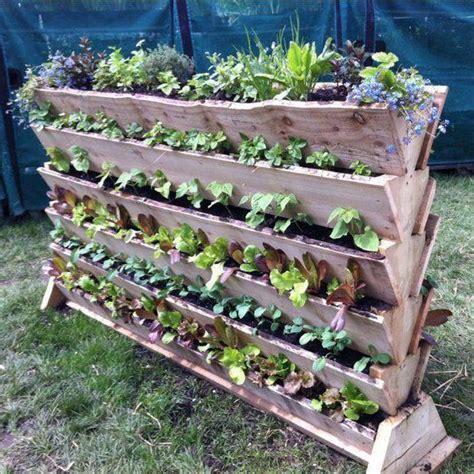 Vertical Vegetable Gardening by Vertical Vegetable Gardening Project Garden Flowers