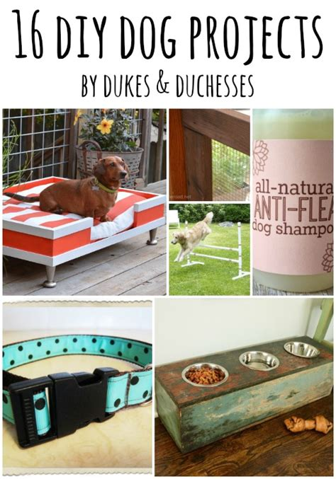 diy pet stuff 16 diy projects dukes and duchesses