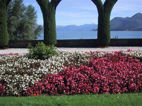 imagenes de jardines navidenos fondos escritorio flores jardines