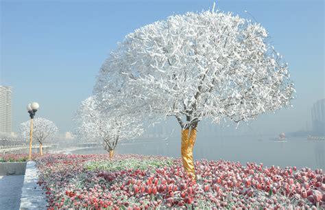 imagenes de buenos dias de invierno las im 225 genes invernales m 225 s espectaculares en fotos a